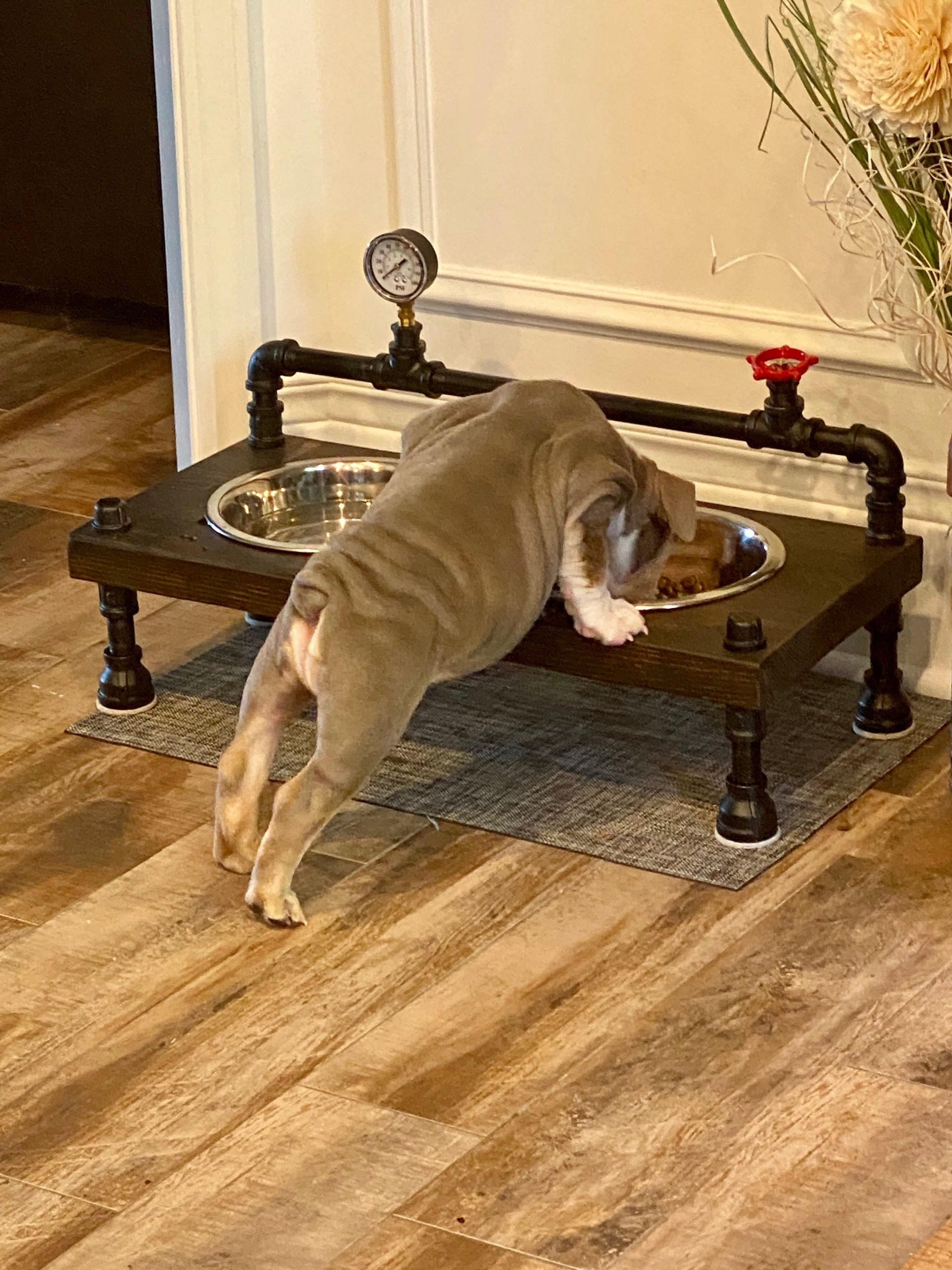https://www.pipeworkpieces.com/wp-content/uploads/2020/10/steampunk-style-unique-raised-dog-bowl-feeder-cool-dog-feeder-free-personalization-included-new-lower-prices-5f7b91bf-scaled.jpg